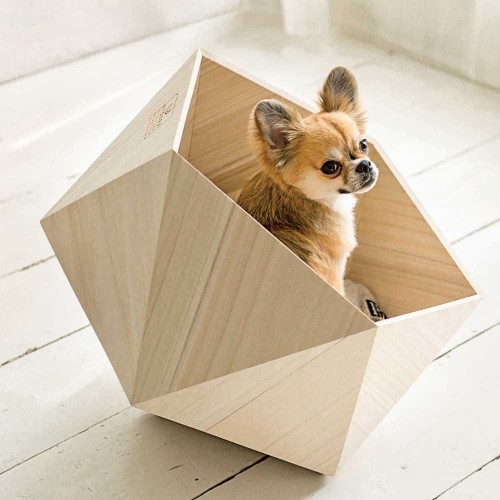 'Pet-tecture': the ultimate pet-friendly designs