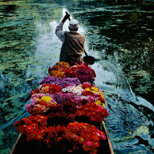 What to see: Steve McCurry exhibition