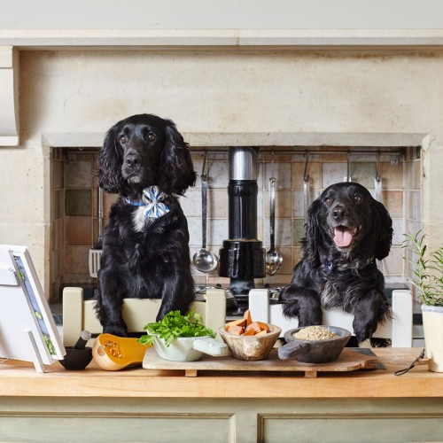 Forthglade's Clean Eating for Dogs campaign