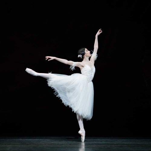 Colorado Ballet S Swan Lake: Town & Country Magazine UK